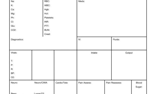Brain Nurse Report Sheet Template - Nursejanx Store with Nurse Report Template